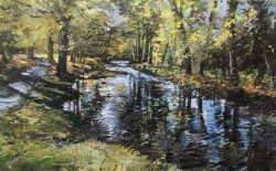 Phil Creek SWAc (Hon), Steam Gallery